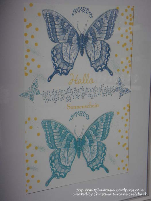 Schmetterlinge Detail